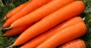 بازار فروش هویج شیرین