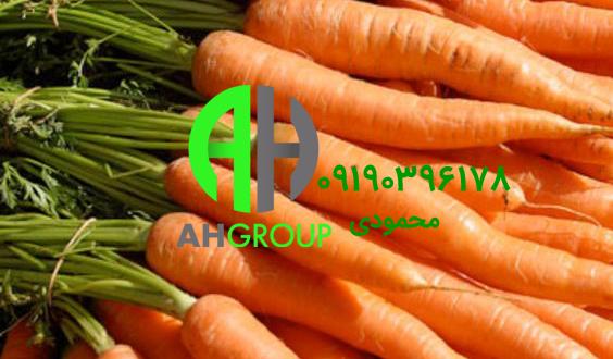 خرید مرغوب ترین هویج