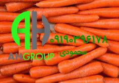 خرید هویج